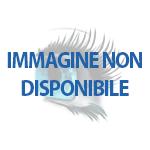 Combinato dentale professional care oxyjet 1000 - Porta testine oral b ...